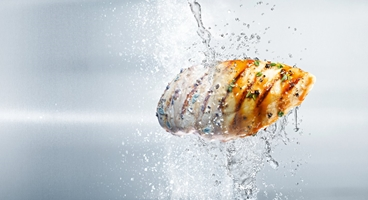 Chicken fillet from the grill, individually frozen and cooled with CRYOLINE technology